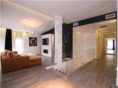 Penthouse 5 camere Herastrau-Sat Francez!